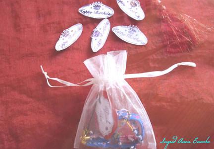 Our gift : an organza bag
